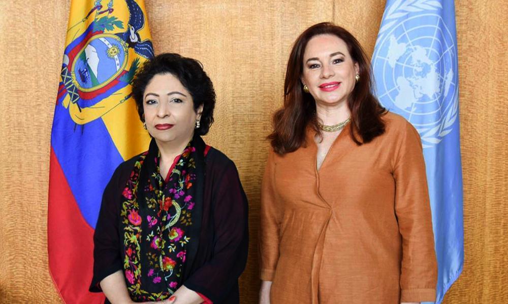 Pakistan's ambassador to the United Nations