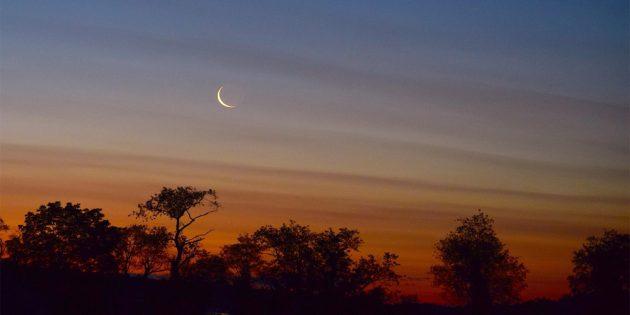 Rajab Moon 2020 not sighted in Pakistan: Mufti Muneeb