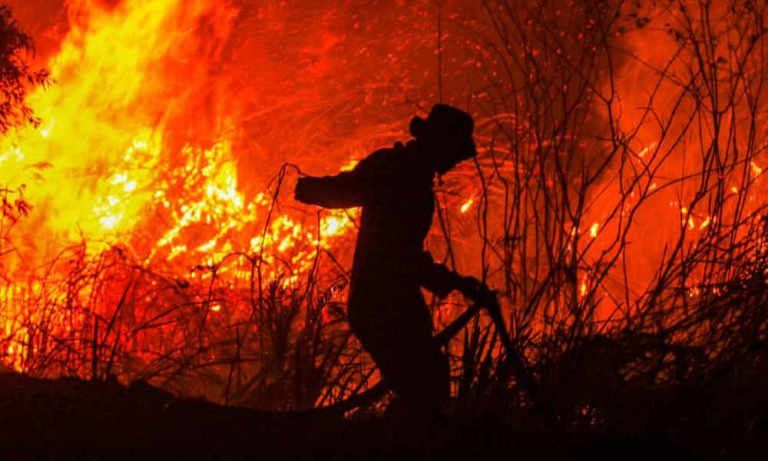 Indonesia forest fires surge, stoking global warming fears