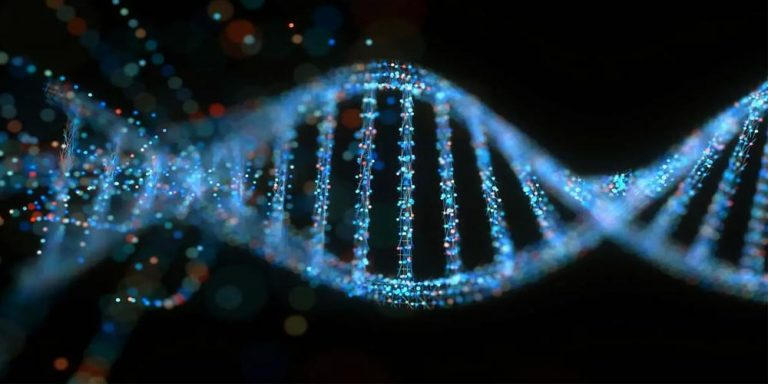 US scientists develop genetic word processor technology