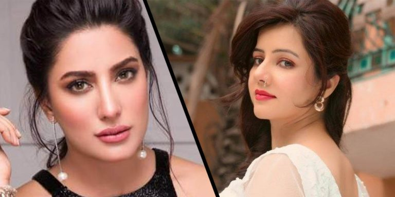 Singer Rabi Pirzada Just Tried To Troll Mehwish Hayat For Her Kashmir Comments