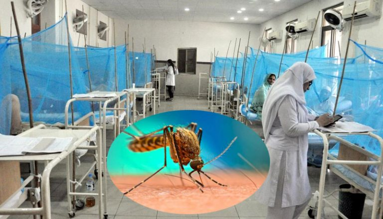 Dengue attacks become uncontrollable