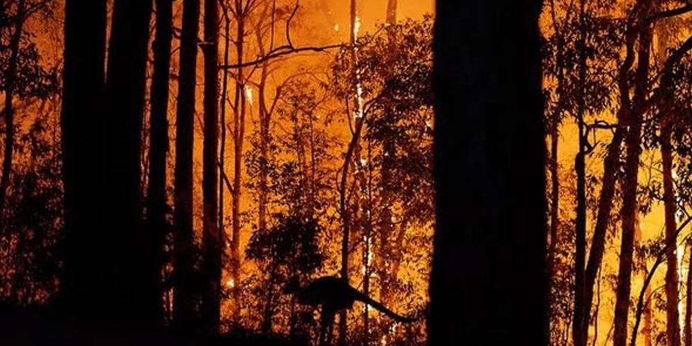 'Satanic face' captured in photo of Australia fires