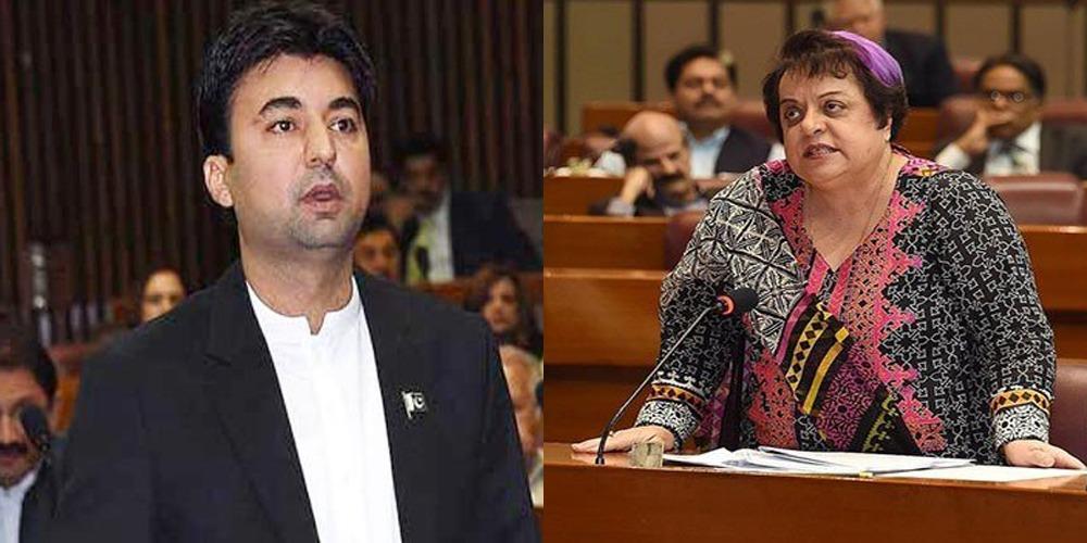 Murad Saeed, Shireen Mazari spoke over Kashmir issue