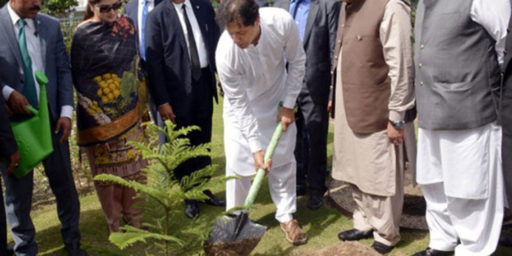 PM Wants All Pakistanis To Get Ready For Massive Tree Plantation Drive In History