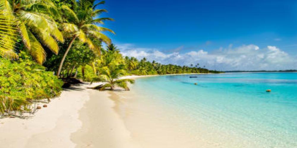 Half of beaches