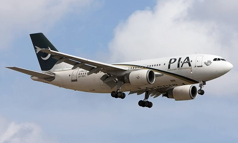 PIA pilots fake license