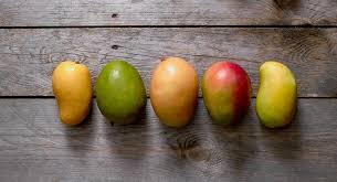 Health benefits of mangoes-the king of fruits in Pakistan