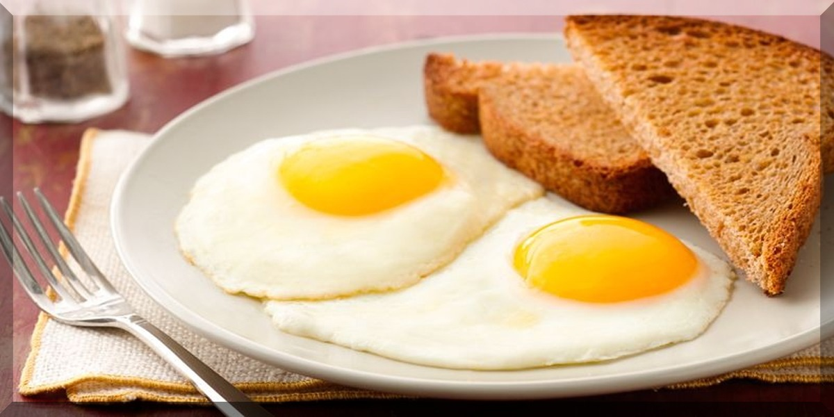 Add Eggs in your daily diet to fight off infections