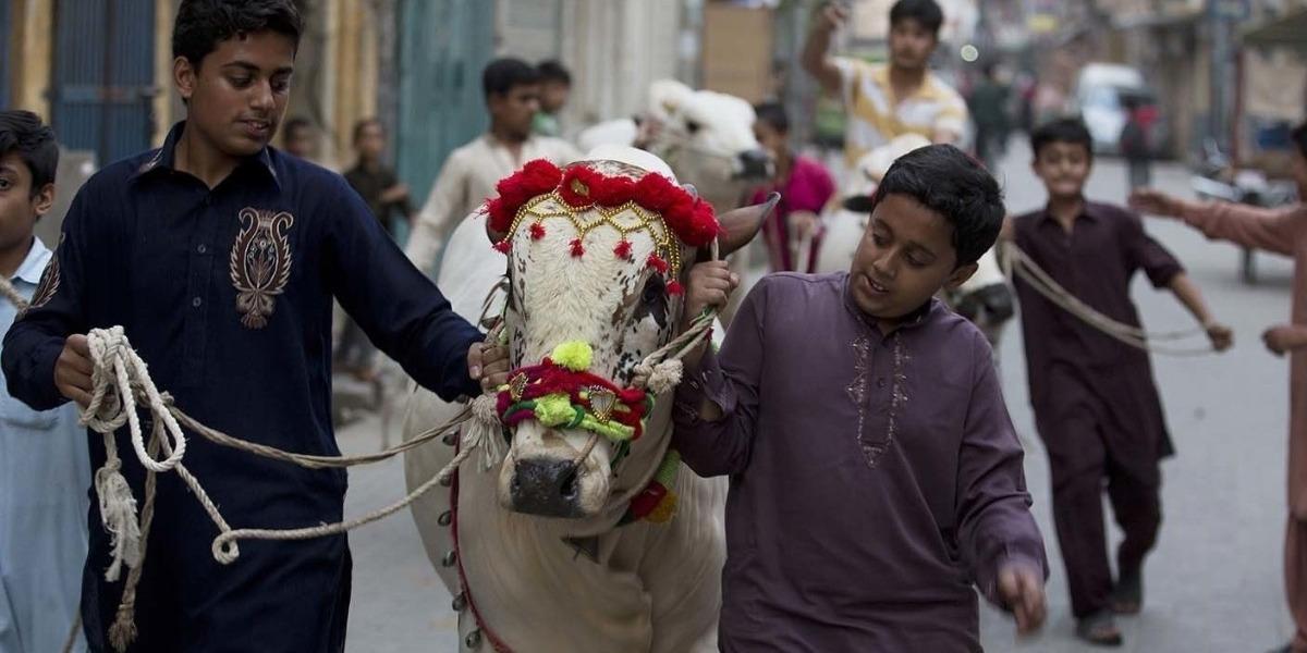 Sindh Govt extends Eid-ul-Adha holiday