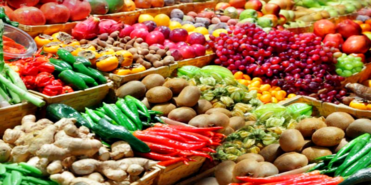 Vegetable exports hit record high of 82.88%