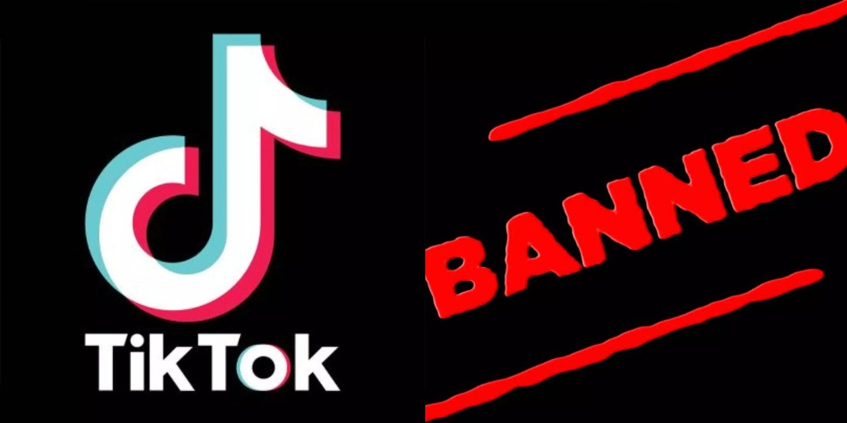 TikTok ban: PTI submits resolution in Punjab Assembly