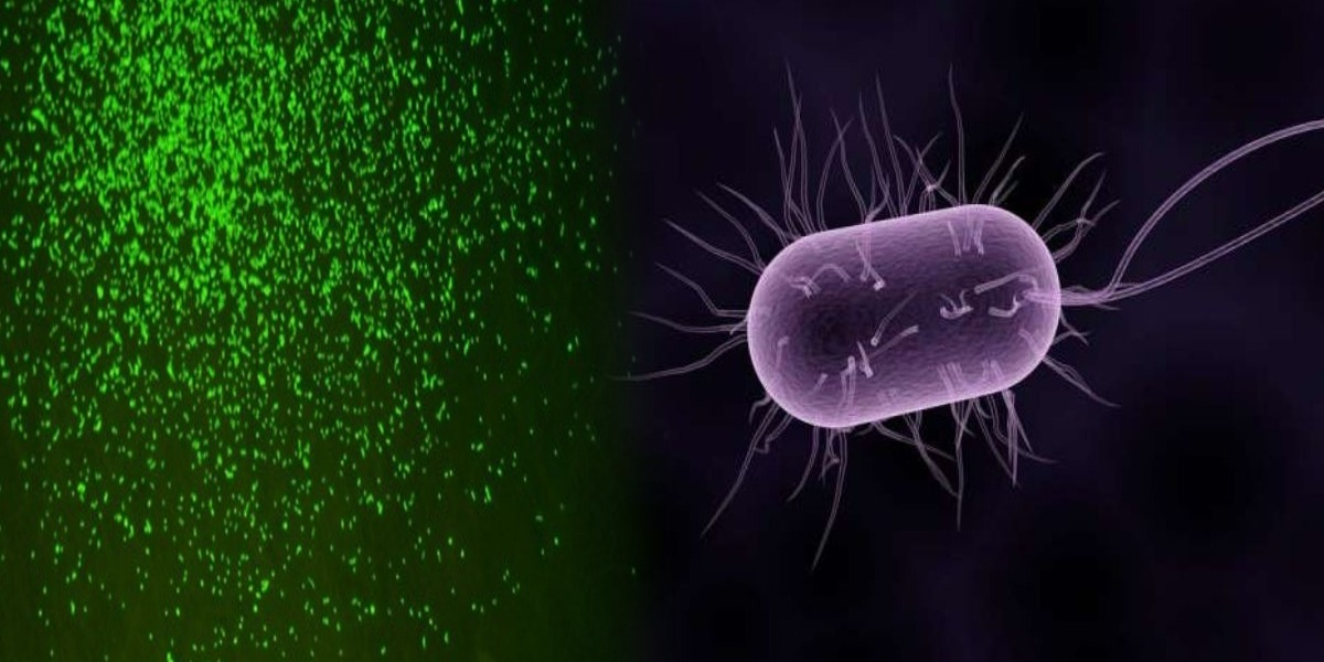 Scientists revive dormant microbes after 100 million years