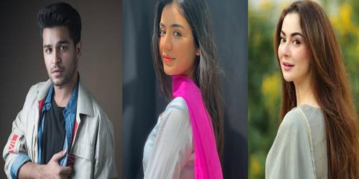 Is Areeqa Haq responsible for Hania-Asim breakup?