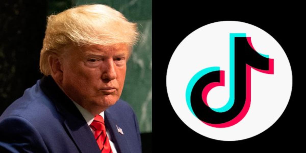 Donald Trump TikTok ban