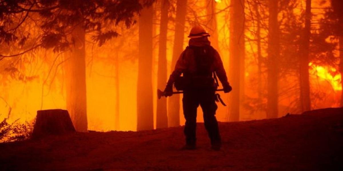 California: Wildfires burn through record area