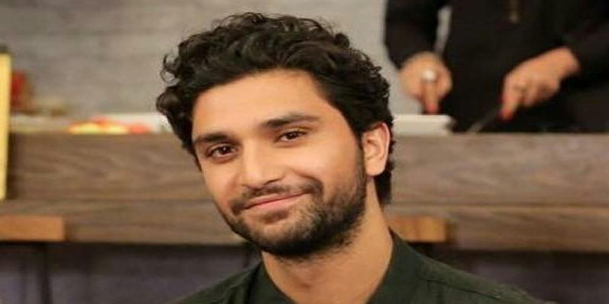 Ahad Raza Mir birthday