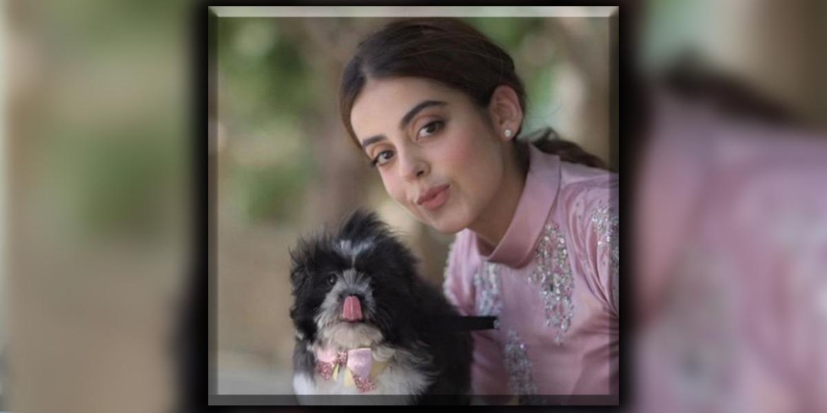 Yashma Gill dogs