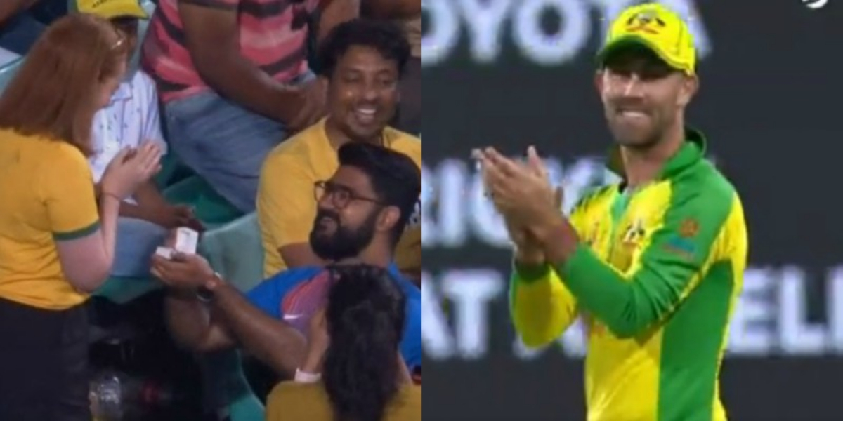 Indian fan proposes Australian girl during second ODI