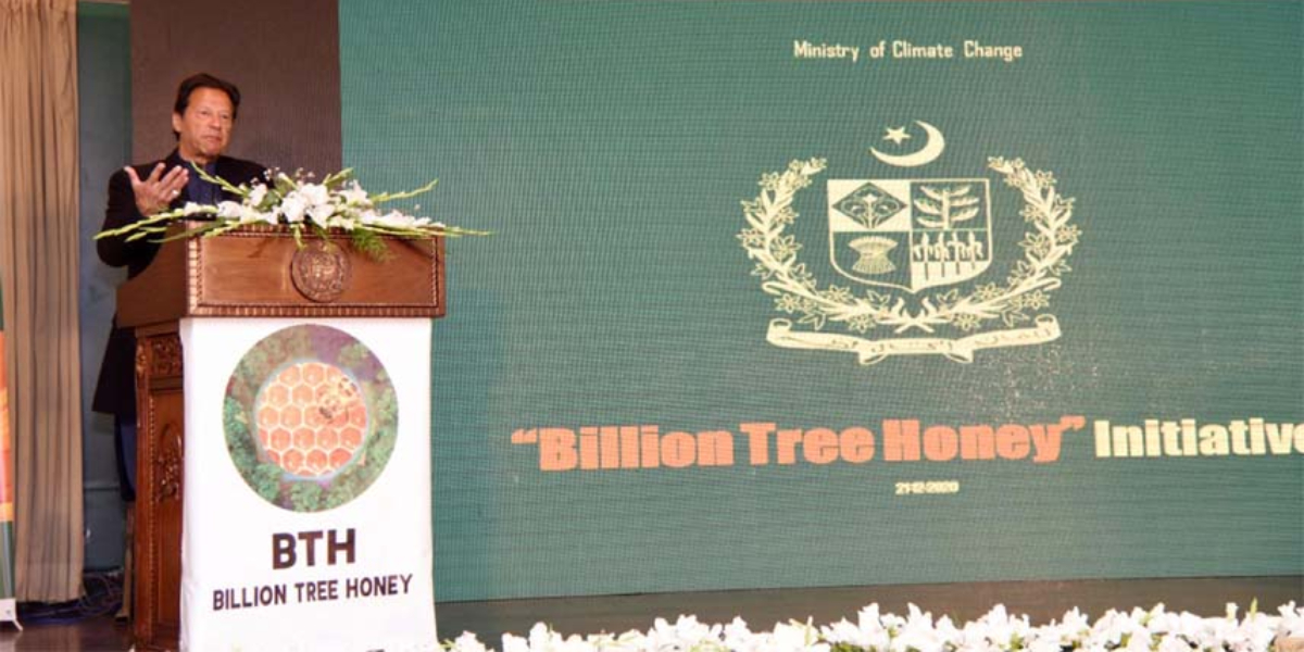 Billion Tree Honey PM new project