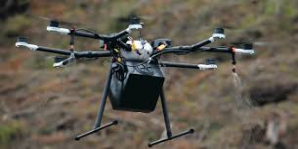 US Company organizes drones to replant forests destroyed by wildfires
