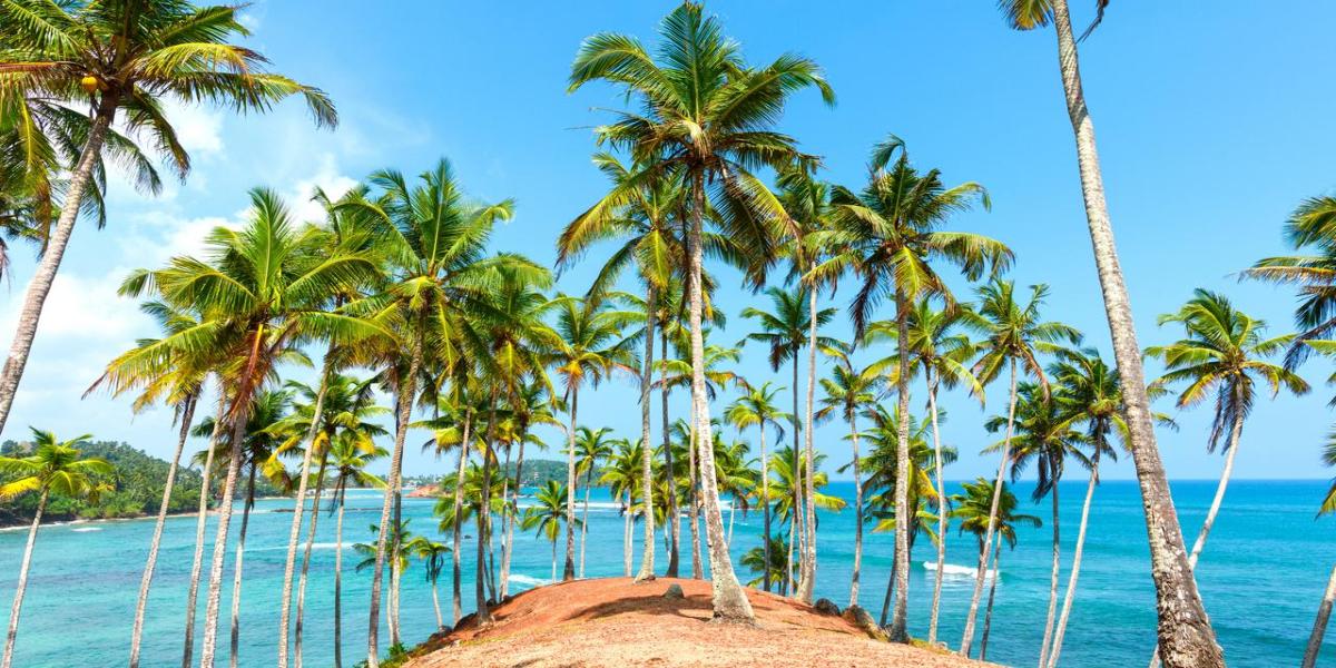 Sri Lanka uplifts travel ban