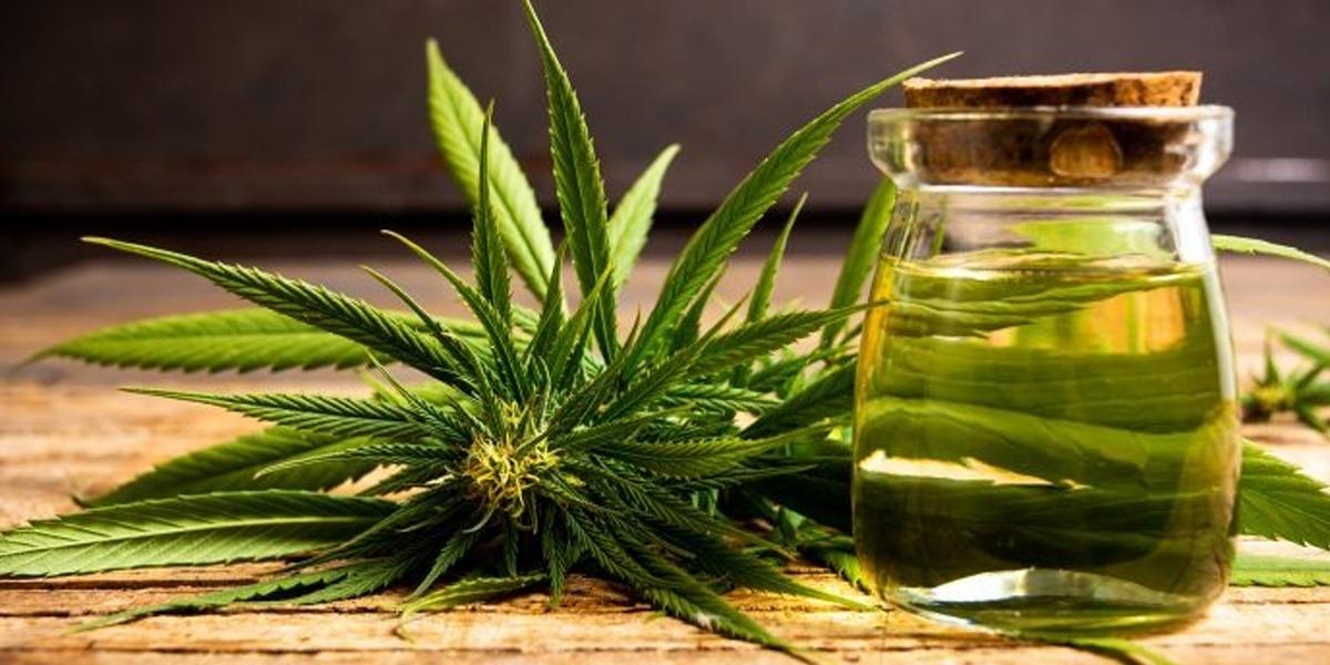 Cannabis mum daughter name