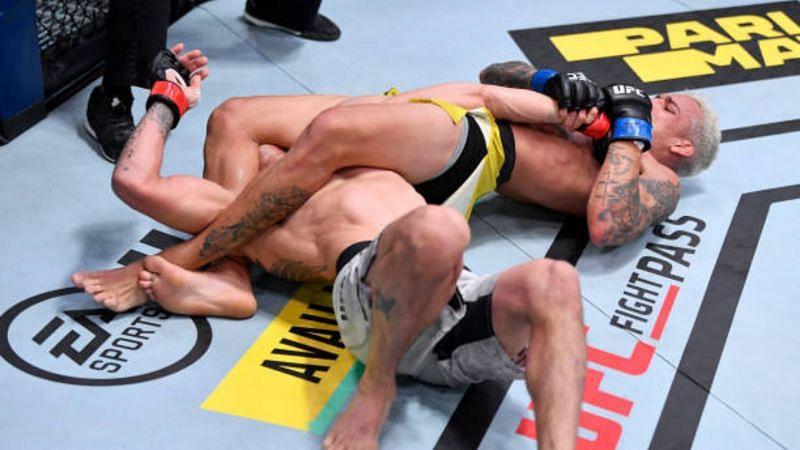 Ferguson got thoroughly conquered throughout the fight and Oliveira almost torn his left arm off during the scrap.