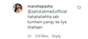 Mansha Pasha Zahid Ahmed