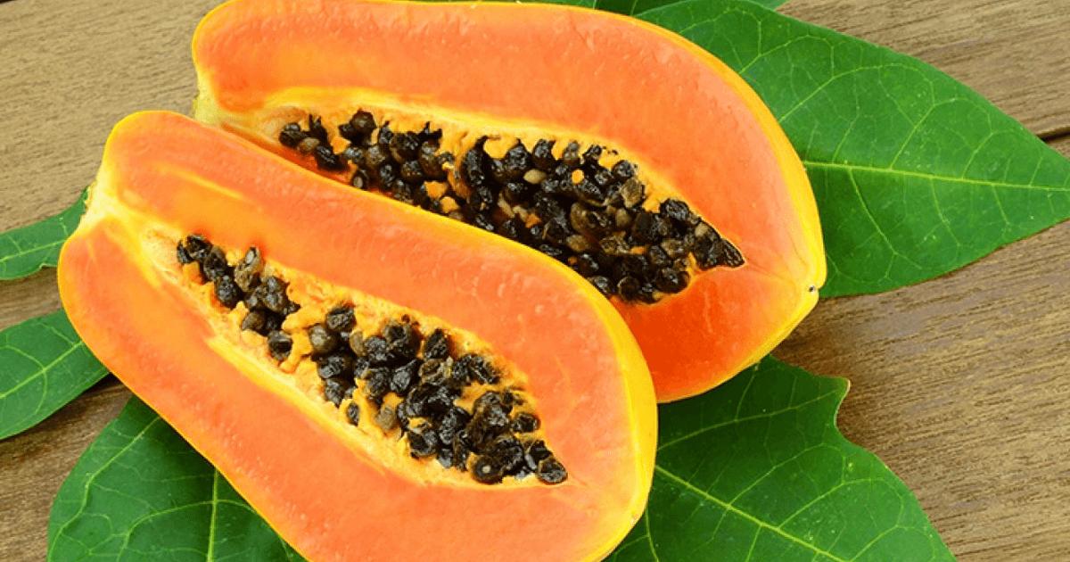 Household treasures Papayas antioxidants and nourishments