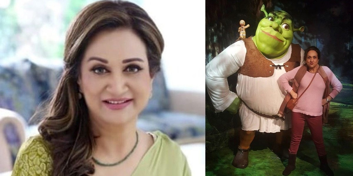 Bushra Ansari bashed