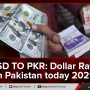 USD TO PKR: Dollar Rate In Pakistan Today 2021