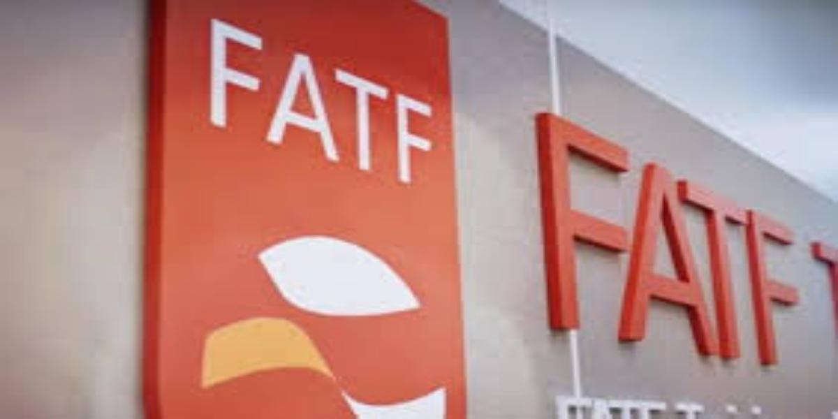 FATF virtual meeting