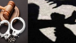 Clifton woman tortures mother-in-law