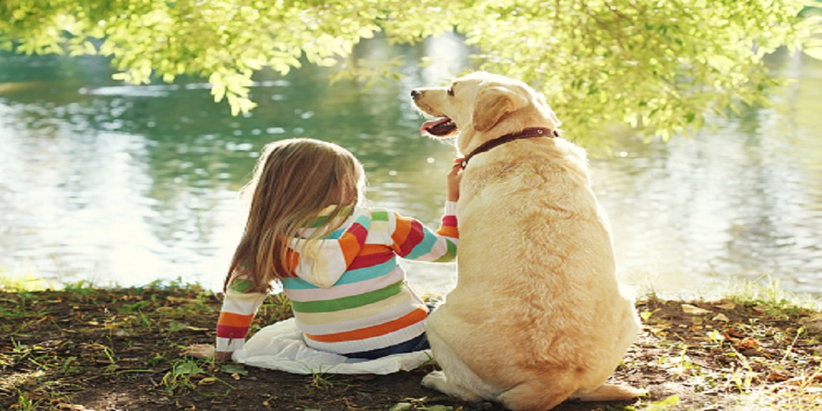 SARS-CoV-2 infection might be more common in pets