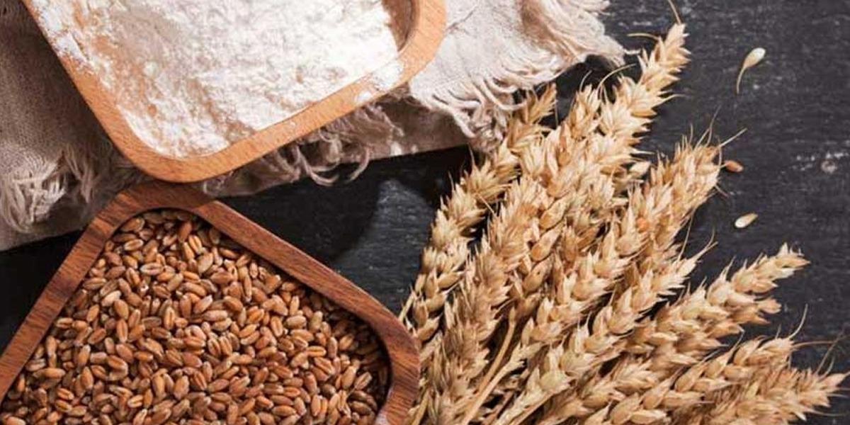 Price of sugar wheat to increase