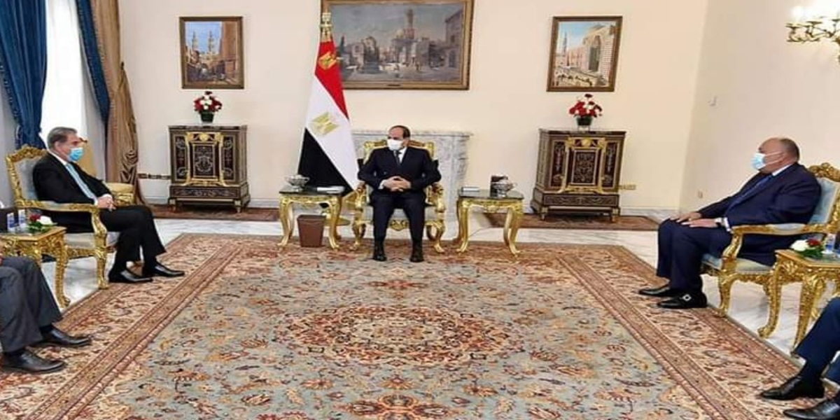Pakistan, Egypt Could Also Share Their Experience In Countering Terrorism, Extremism: FM
