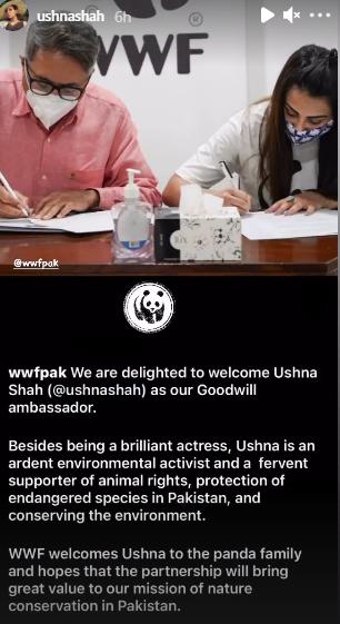Ushna Shah WWF