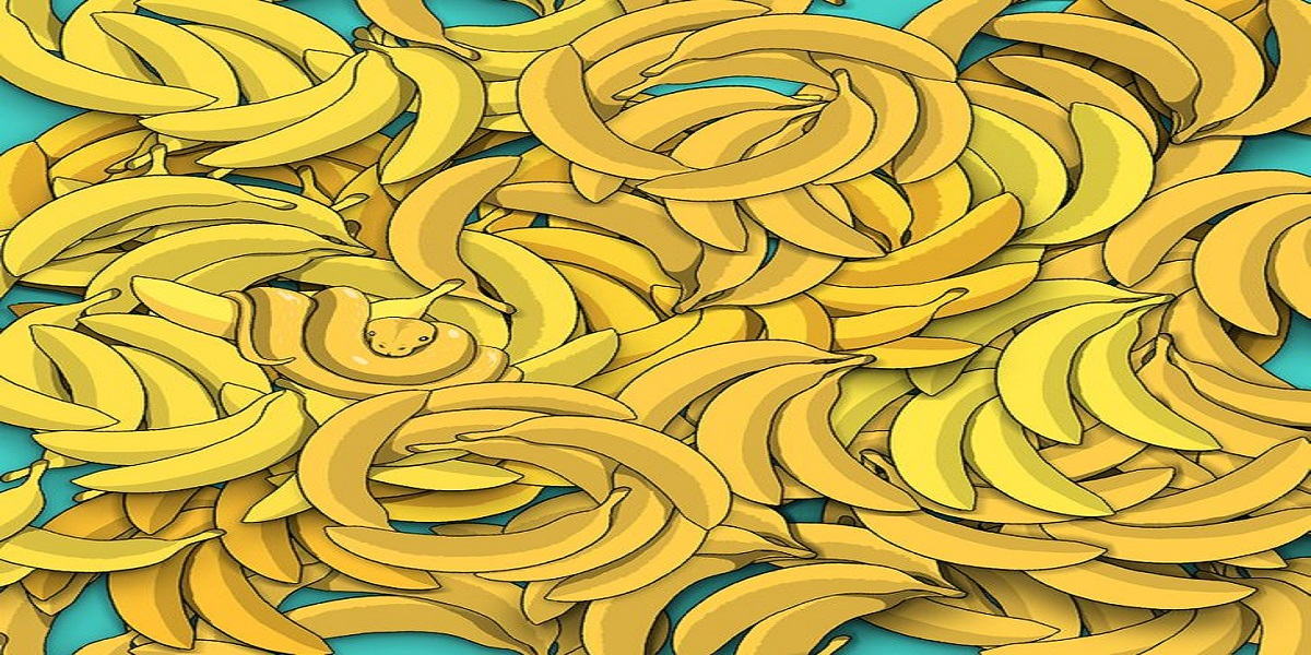 Can you find a snake among these bananas?