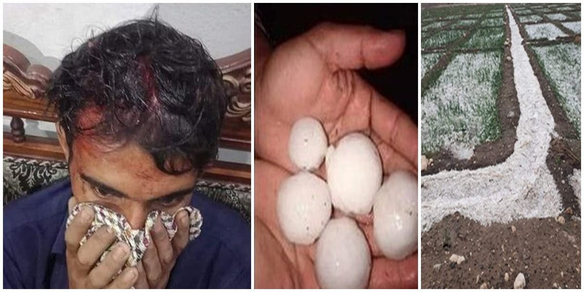 Heavy Rains Hit Large Part Of Punjab, Man Injured By Softball-Sized Hail