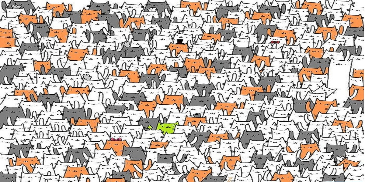 Can you find a bunny among these cats?