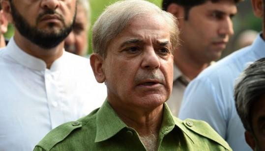 Reference Against Shehbaz Sharif's Son-In-Law, Daughter Adjourned Till 19 June