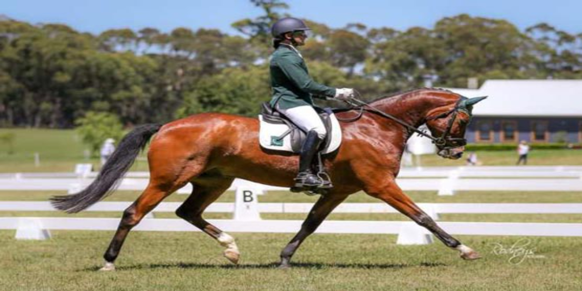 Usman's Olympic dreams shattered when he loses his equine partner