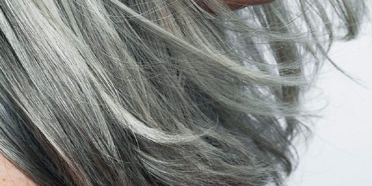 Study reveals Psychological stress affects hair to grey