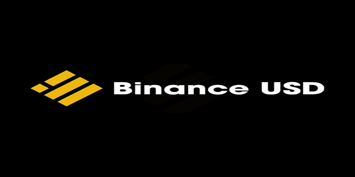 Binance USD TO PKR