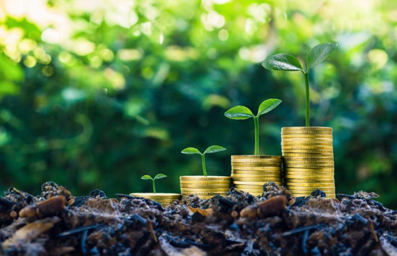 Guidelines for Green Bonds