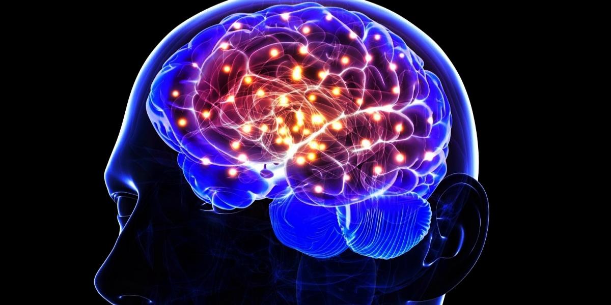 Brain functioning foods