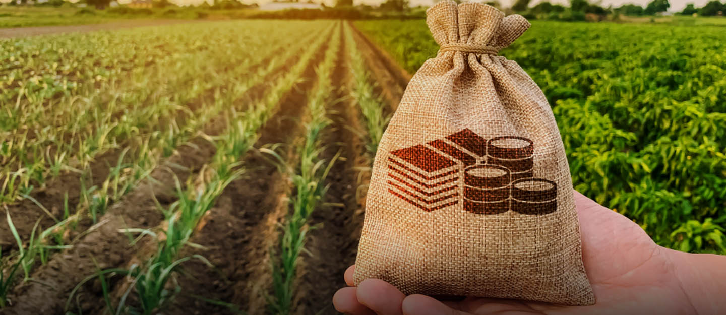 agriculture policies