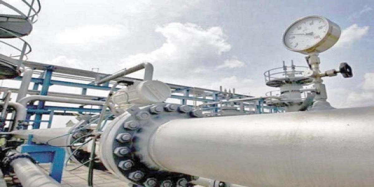 Agritech's urea plant shut as RLNG supply suspended
