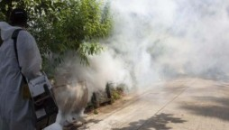 Fumigation Campaign